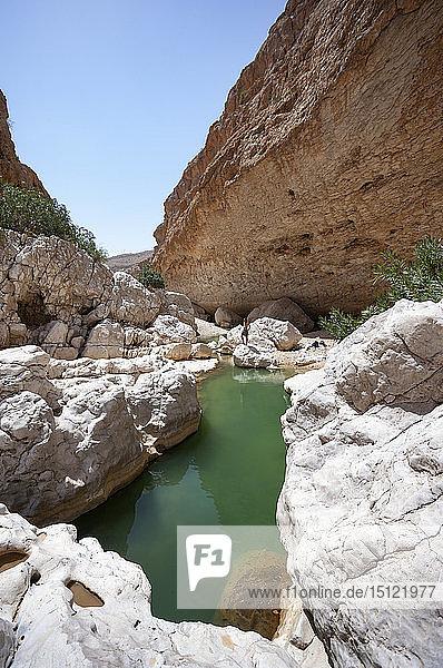 Tourist mit Blick auf das Wadi Bani Khalid  Oman