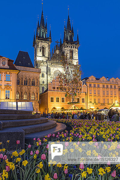Staromestske namesti (Old Town Square) and Our Lady before Tyn Church at dusk  UNESCO World Heritage Site  Prague  Bohemia  Czech Republic  Europe