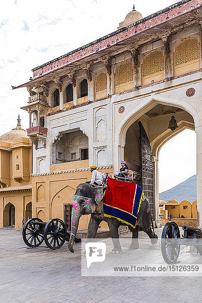 Elephants walking through the entrance gate at Amer (Amber) Palace and Fort  UNESCO World Heritage Site  Amer  Jaipur  Rajasthan  India  Asia