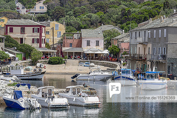 The small fishing village of Port de Centuri on Cap Corse  the most northerly point of Corsica  France  Mediterranean  Europe