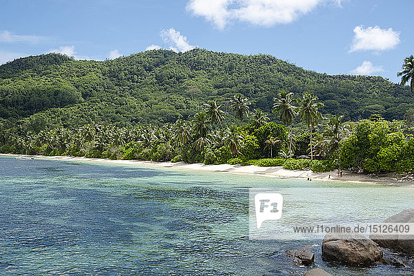 Anse Marie-Louise on the southeast coast of Mahe  Seychelles  Indian Ocean  Africa