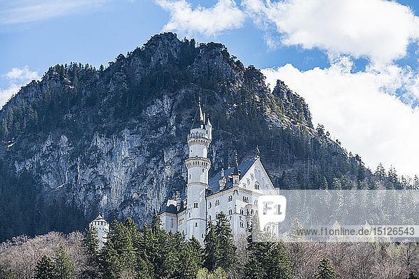Castle Neuschwanstein  with the Alps behind  Schwangau  Bavaria  Germany  Europe