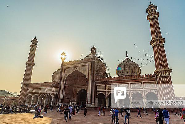 Sunset at Jama Masjid  Old Delhi  India  Asia