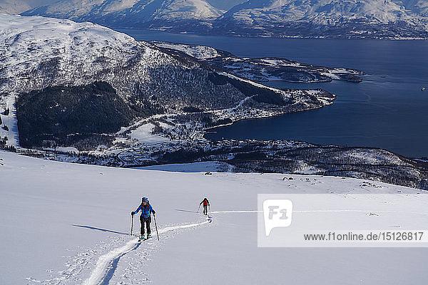 Ski touring in the Lyngen Alps  Lyngseidet  Lyngen peninsula  Troms County  Norway  Scandinavia  Europe