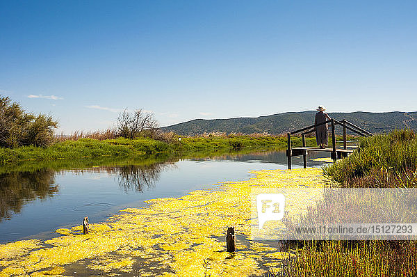 Orbetello Lagoon  Orbetello  Province of Grosseto  Maremma  Tuscany  Italy  Europe