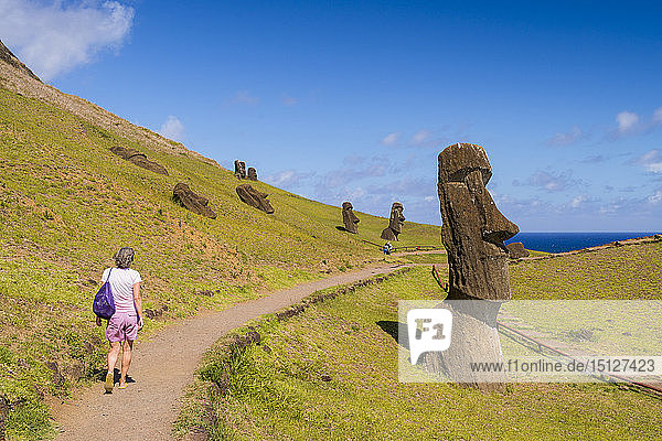 Moai heads of Easter island  Rapa Nui National Park  UNESCO World Heritage Site  Easter Island  Chile  South America