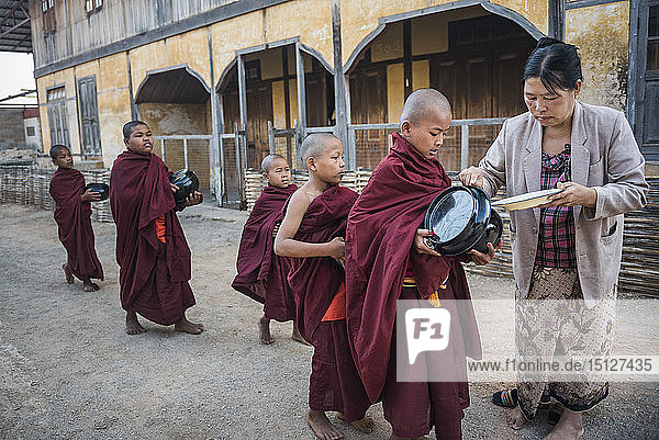 Young novice monks collecting alms at Pindaya  Shan State  Myanmar (Burma)  Asia