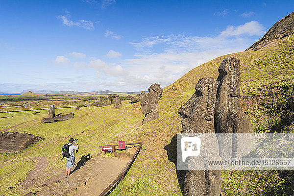 Moai heads of Easter Island  Rapa Nui National Park  UNESCO World Heritage Site  Easter Island  Chile  Polynesia  South America
