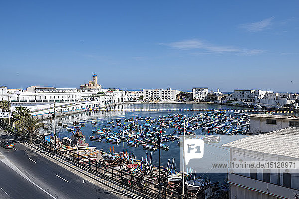 Small boat harbour  Algiers  Algeria  North Africa  Africa