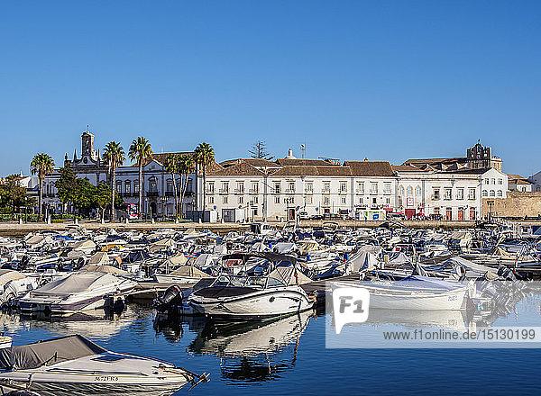 Marina in Faro  Algarve  Portugal  Europe