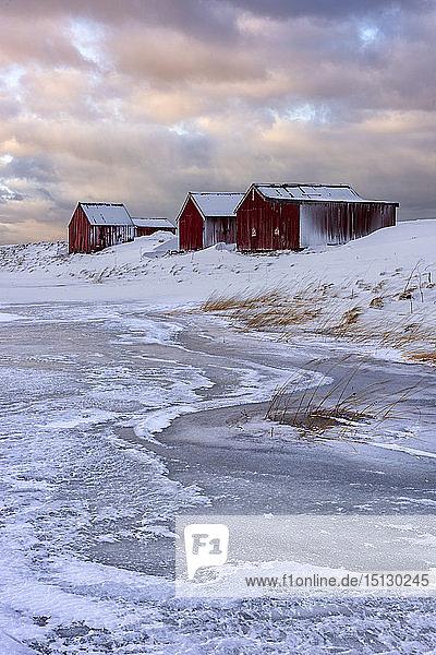 Fresh snow surrounds typical fishermen houses called Rorbu in winter  Eggum  Lofoten Islands  Arctic  Norway  Europe
