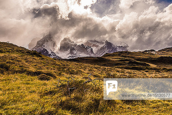 Beautiful scenery in Torres del Paine National Park  Patagonia  Chile  South America
