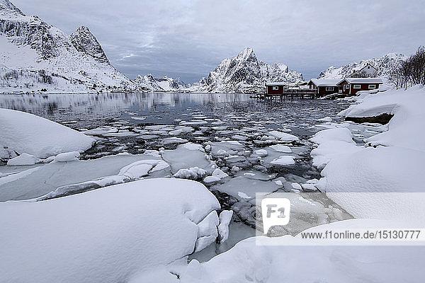 Traditional houses at Reine  Moskenes  in the Lofoten Islands in winter  Arctic  Norway  Europe
