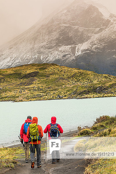 Enjoying the peaceful and beautiful scenery of Torres del Paine National Park  Patagonia  Chile  South America