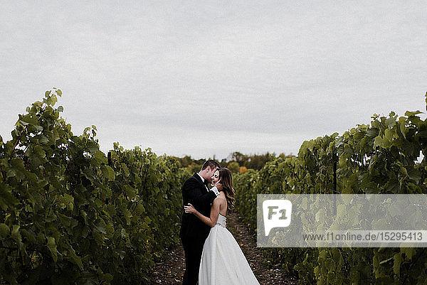 Romantische junge Braut und Bräutigam am Hochzeitstag im Weinberg