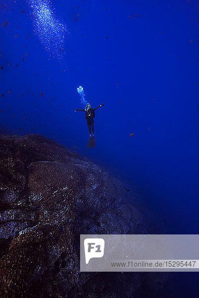 Freitauchen,  Revillagigedo-Inseln,  Socorro,  Baja California,  Mexiko
