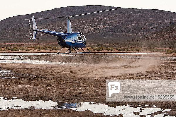 Hubschrauber schwebt über staubiger ländlicher Landschaft  Kapstadt  Westkap  Südafrika