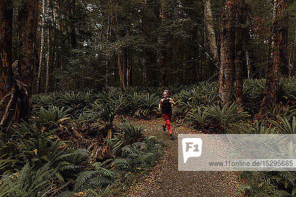 Woman jogging in forest  Queenstown  Canterbury  New Zealand