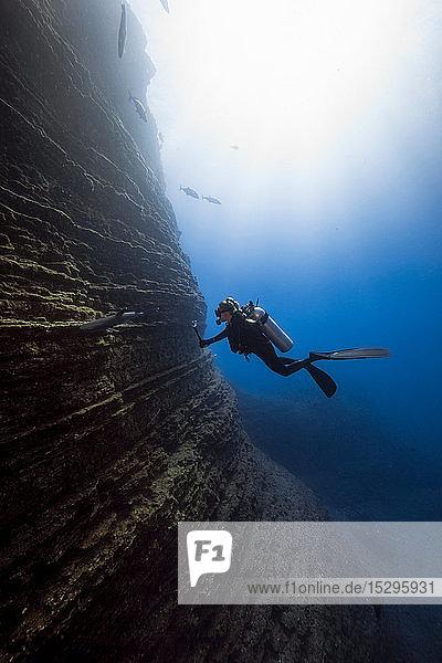 Taucherin filmt weissen Zipfelhai  Revillagigedo-Inseln  Socorro  Baja California  Mexiko