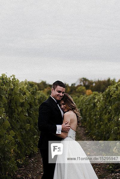 Romantische junge Braut und Bräutigam umarmen sich am Hochzeitstag im Weinberg