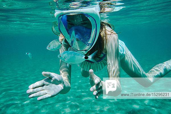 Unterwasseransicht eines schnorchelnden Mädchens  das Fische betrachtet  Limnos  Khios  Griechenland Unterwasseransicht eines schnorchelnden Mädchens, das Fische betrachtet, Limnos, Khios, Griechenland