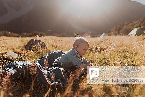 Baby exploring wilderness  Wanaka  Taranaki  New Zealand