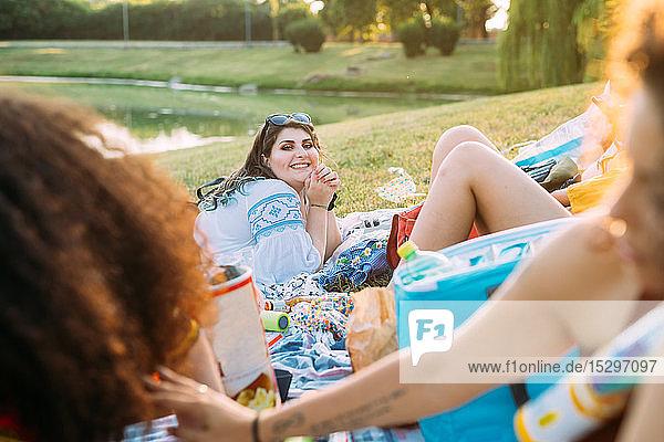 Gruppe von Freunden entspannt beim Picknick im Park