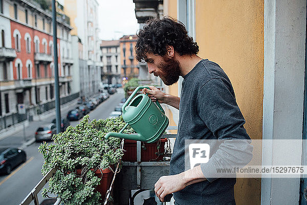 Bearded young man watering plants on balcony
