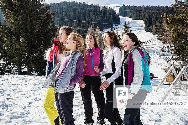 Fünf jugendliche Skifahrerinnen lachend in verschneiter Landschaft  Rückansicht  Tirol  Steiermark  Österreich