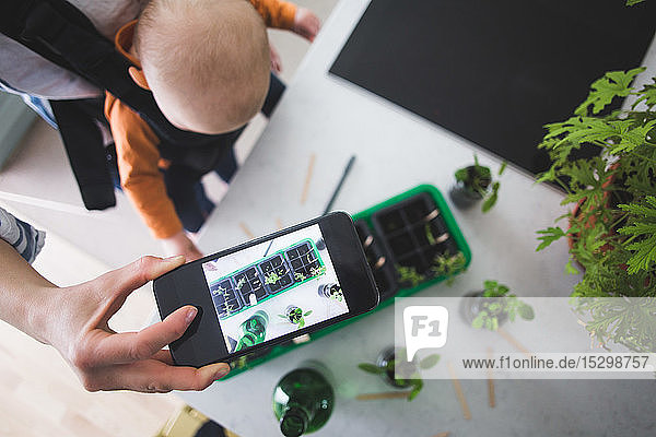 High angle view of blogger photographing plants with smart phone while carrying baby girl in kitchen