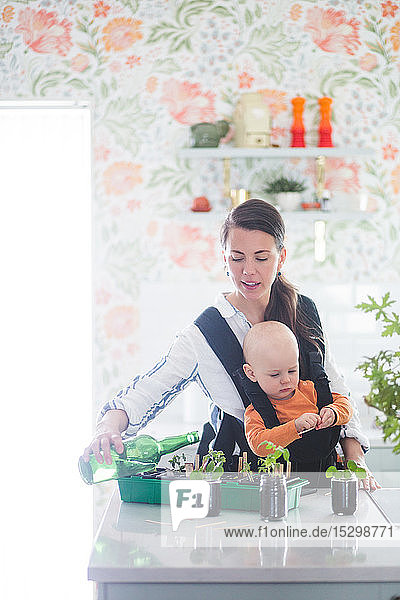 Mid adult freelancer carrying daughter while watering potted plants on kitchen island