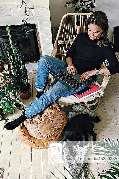 Hochwinkelansicht einer Frau mit Laptop  die auf einem Sessel sitzend durch Mops im häuslichen Raum Hochwinkelansicht einer Frau mit Laptop, die auf einem Sessel sitzend durch Mops im häuslichen Raum
