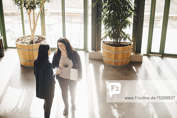 Lächelnde Geschäftsfrauen beim Kaffeetrinken während der Kommunikation im hell erleuchteten Büro