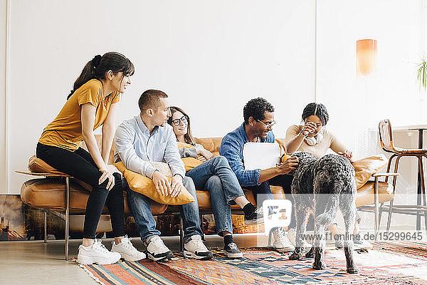 Fröhliche Programmierer  die mit einem Kollegen auf dem Sofa sitzend in einem kreativen Büro Hund spielen
