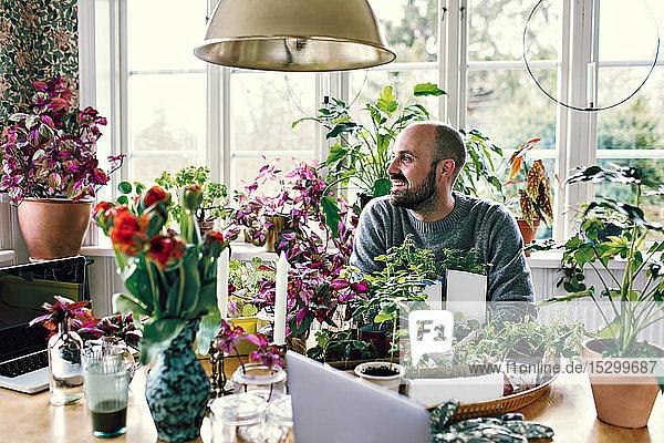 Lächelnder Mann schaut weg  sitzt am Tisch mit Pflanzen am Fenster im Raum