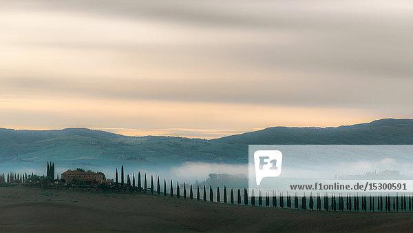 Haus mit Zypressen  Toskana  Italien  Europa