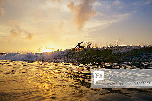 Male surfer making a turn off top of wave on sunset ocean  Sayulita  Nayarit  Mexico