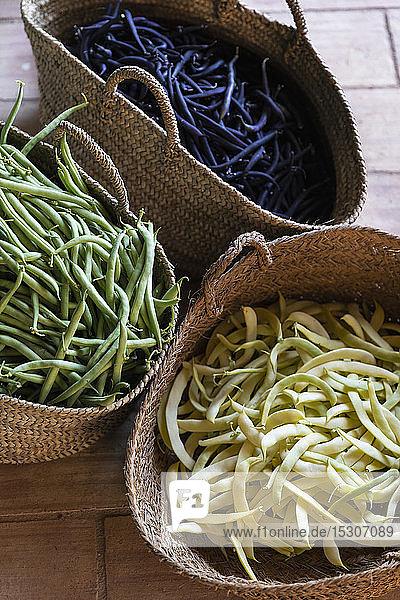 Frisch geerntete gelbe  grüne und violette Bohnen in Strohkörben