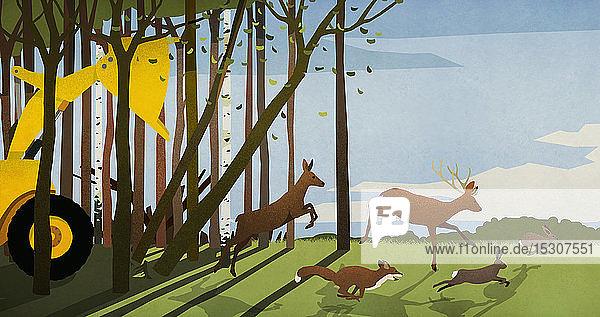 Waldtiere auf der Flucht vor einem Bulldozer  der den Wald abholzt
