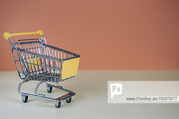 Tiny toy shopping cart