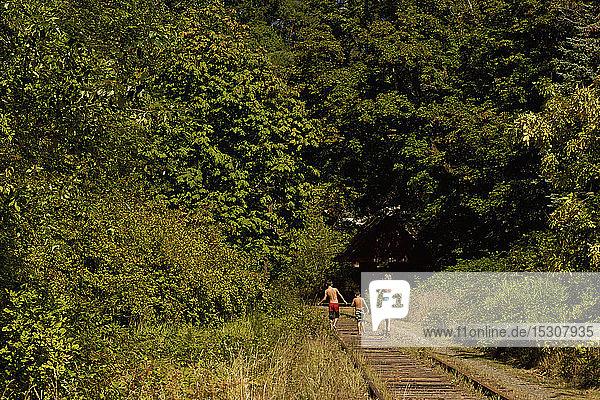 Bare chested boys in swim trunks walking sunny  summer train tracks