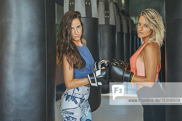Portrait of two women with boxing gloves at sandbag in gym