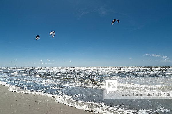 Deutschland  Schleswig-Holstein  Sankt Peter-Ording  Kitesurfer in der Nordsee