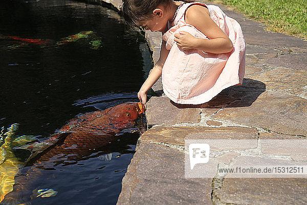Mädchen an einem Teich mit Kois