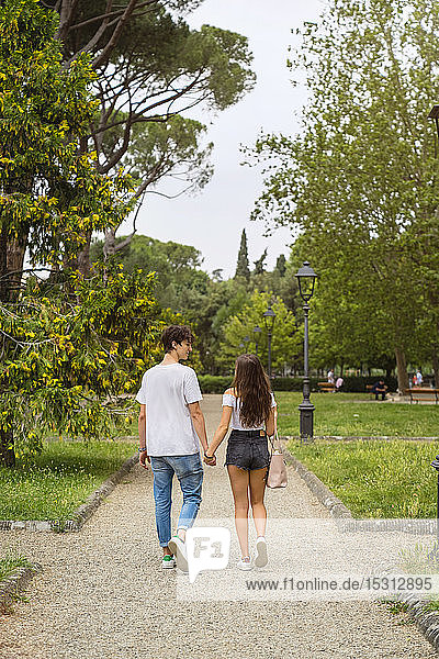 Rear view of young couple in a park