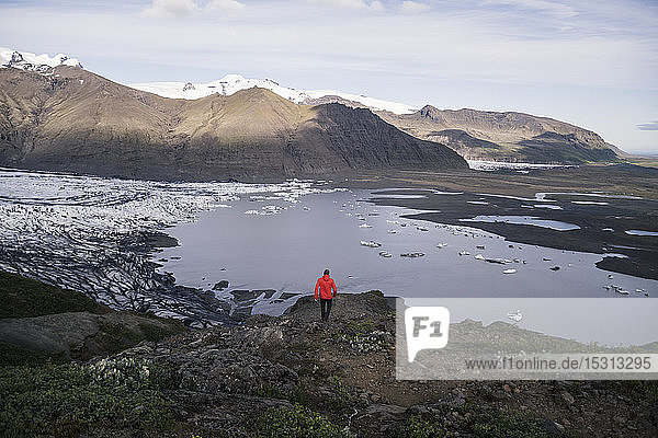 Mature man hiking at Skaftafell National Park along Vatnajokull glacier  Iceland