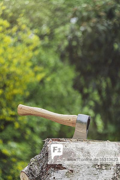 Axt in einem Baumstamm