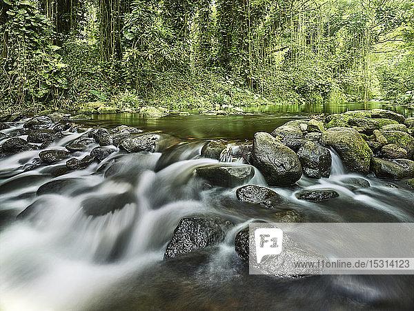 Bach fließt durch Felsen im Regenwald im Waipio-Tal