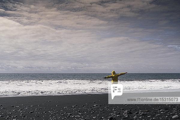 Erwachsener Mann an einem Lavastrand in Island  Rückansicht