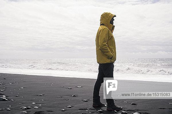 Ein erwachsener Mann an einem Lavastrand in Island  der auf das Meer schaut